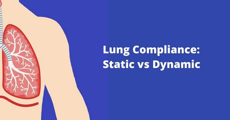 Lung Compliance_ Static vs Dynamic