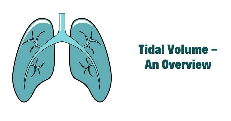 Tidal Volume - An Overview